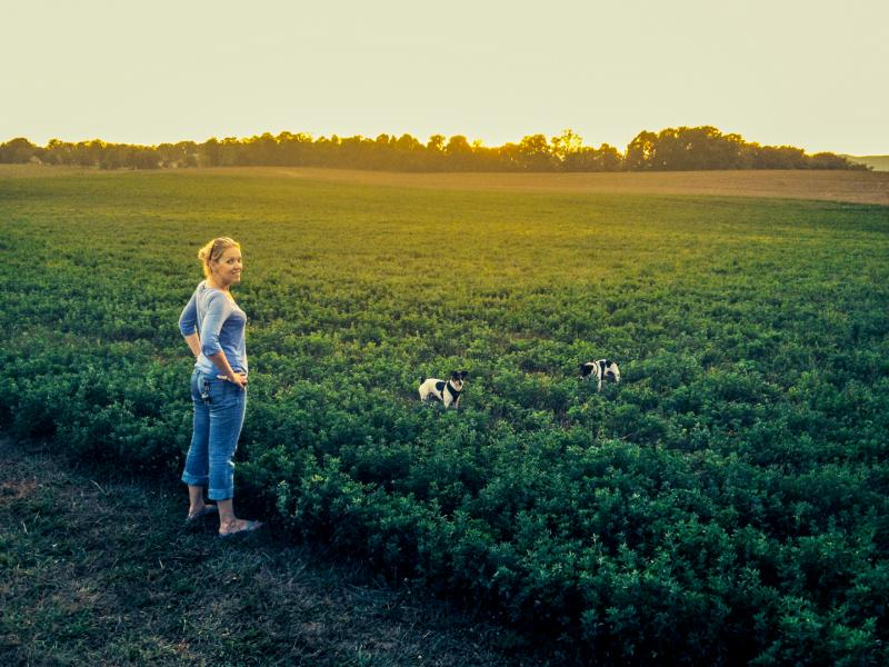 Melissa Hombosky stands in a field as the sun sets, smiling and watching her dogs play
